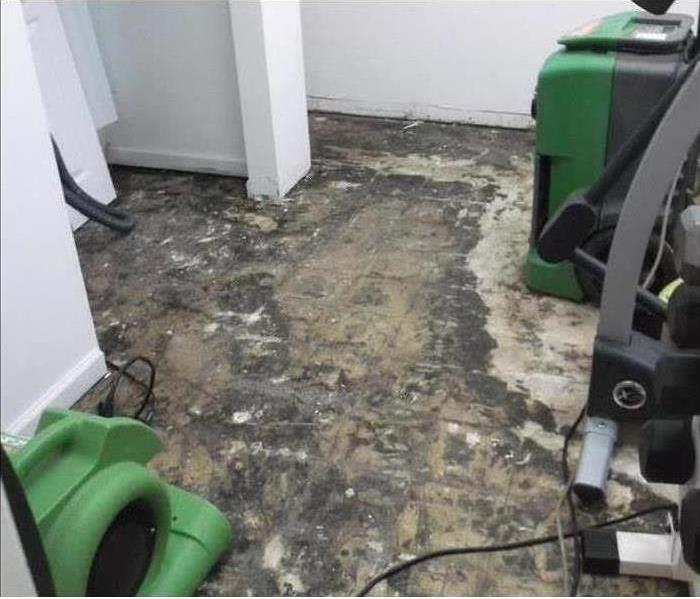 Wet carpet from a water damage