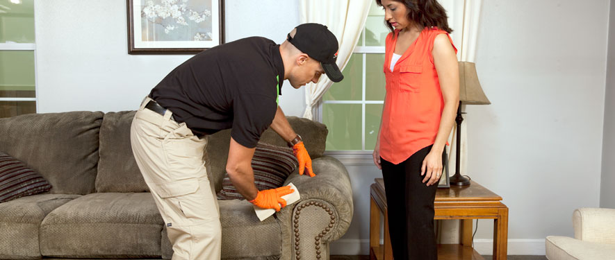 Downingtown, PA carpet upholstery cleaning